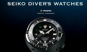 Best Seiko Dive Watch For Every Budget (And for Your Money)